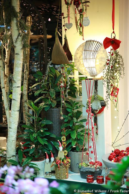 Weihnachten Blumenhof Wilkens 2017 11 17 0026
