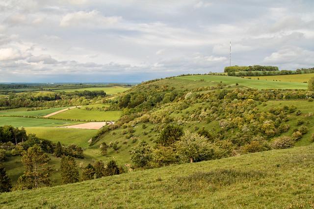 Cottington Hill
