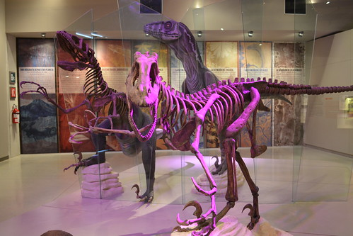 Gran Museo del Mundo Maya, Los Dinosaurios