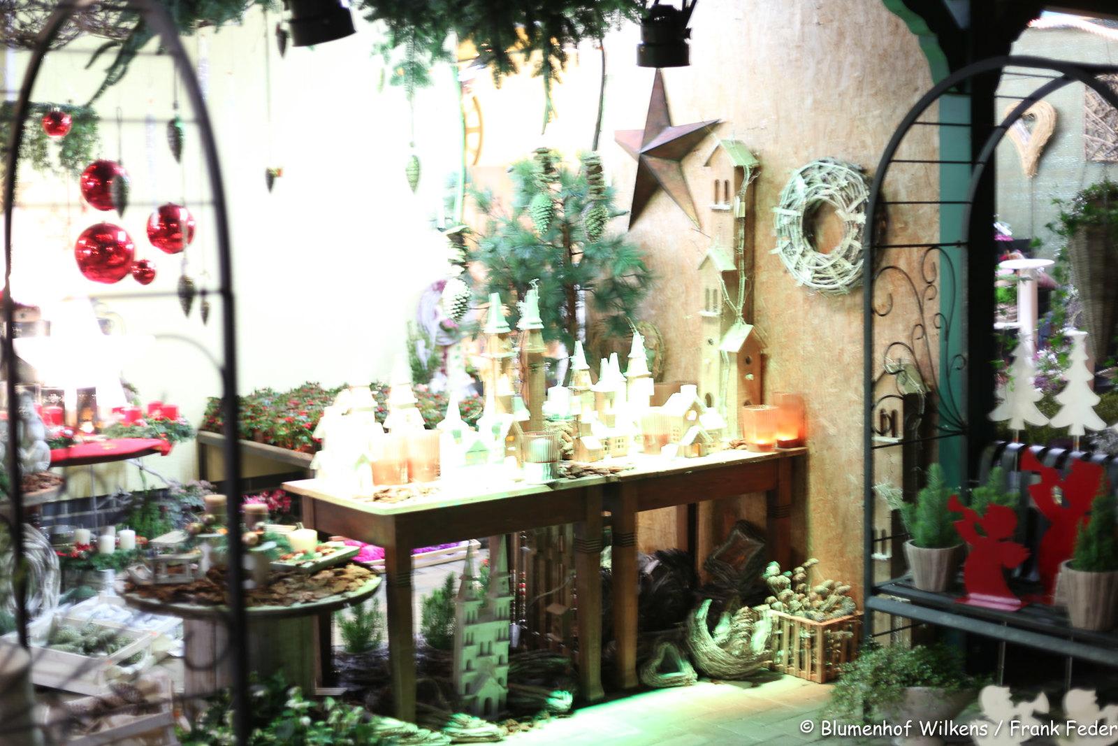 Weihnachten Blumenhof Wilkens 2016 11 10 0016