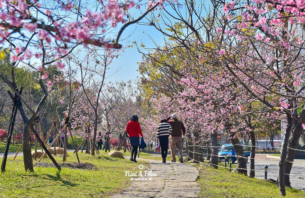 中科崴立櫻花公園202005