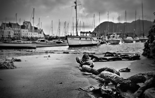 coastline seascape landscape outdoors exploring nocolour blackandwhite monochrome devon english england british beach seaside sea sand boats ilfracombeharbour harbour ilfracombe anchor
