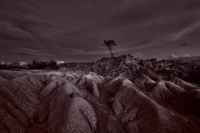 Desierto de la Tatacoa B&N