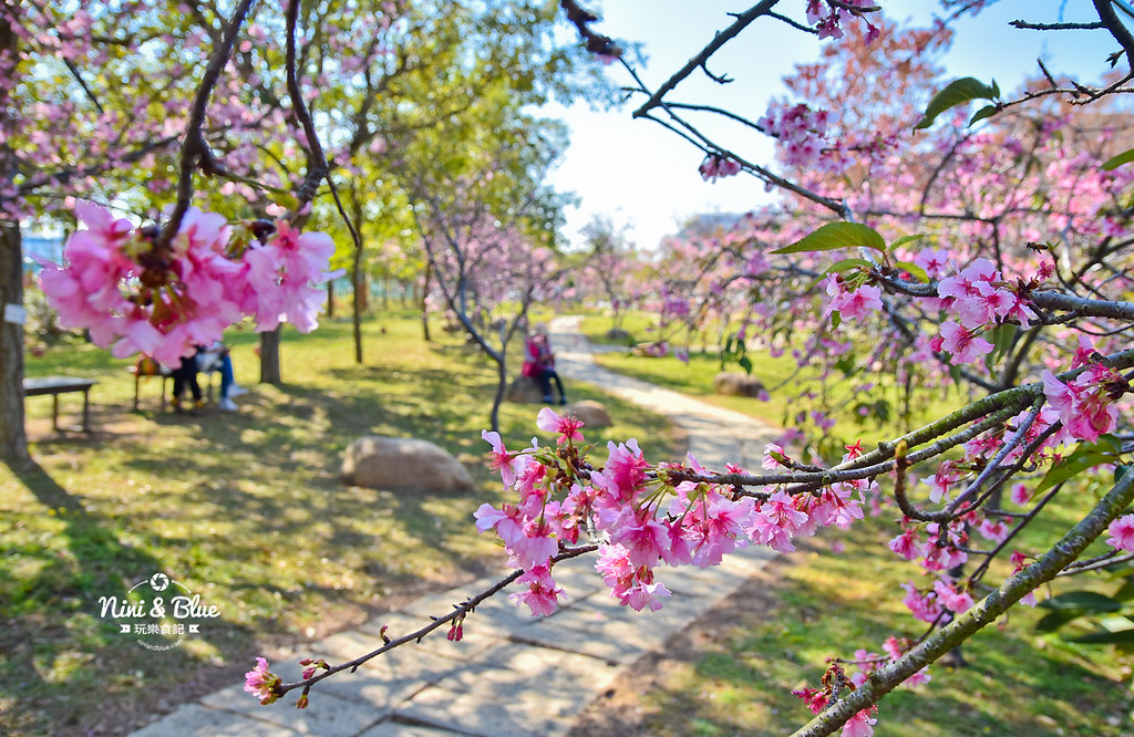 中科崴立櫻花公園202010
