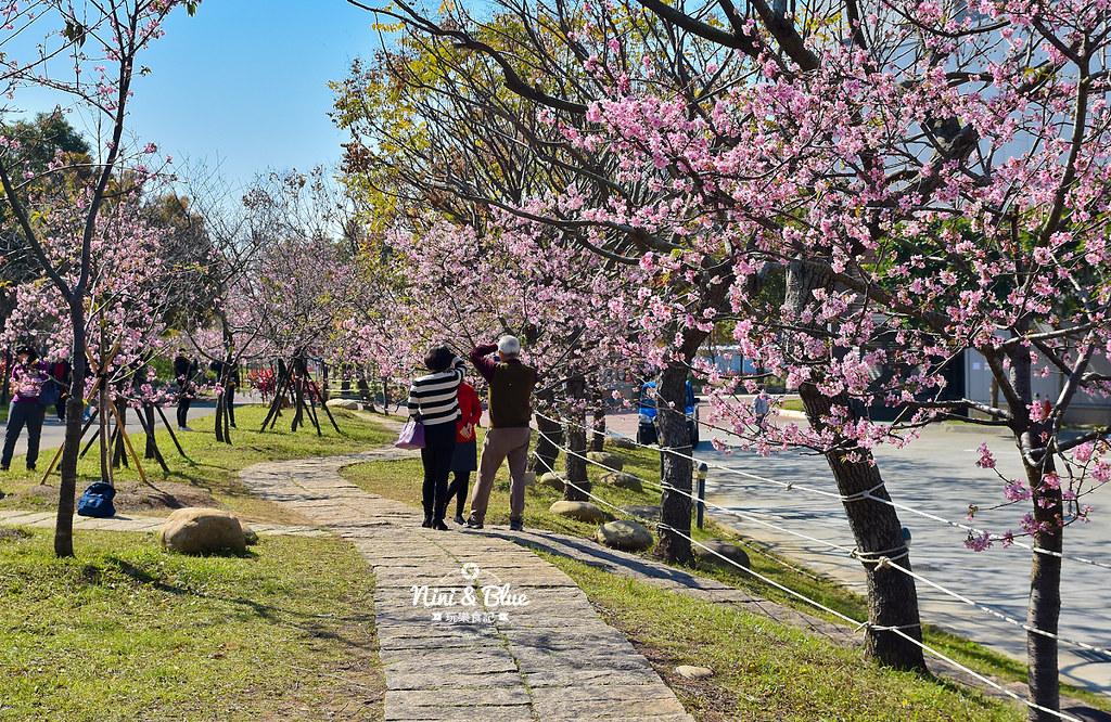 中科崴立櫻花公園202008
