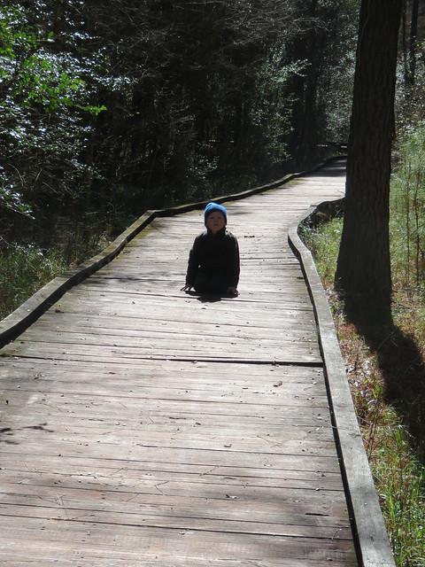 Lake Livingston State Park