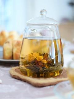 工芸茶 20200206-DSCT9827 (2)