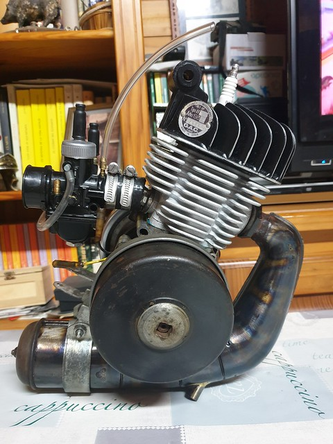Proyecto ¿racing o cafe racer? 49500596627_04c2a52649_z