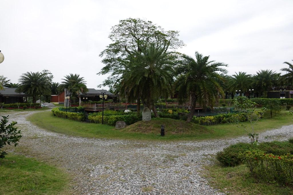 20200201_花蓮瑞穗棕櫚湖民宿 (69)