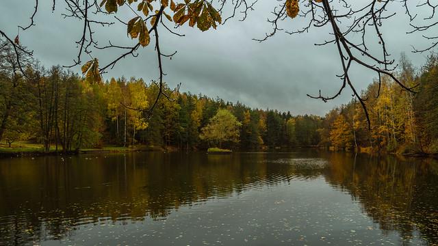 Herbst am Teich  (4)