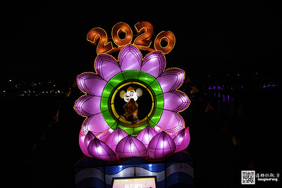 【遊記】2020新北燈會 (21)