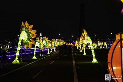 【遊記】2020新北燈會 (14)