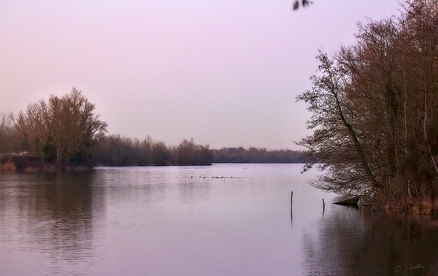 Teintes du soir ~ Light evening shade