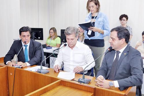 1ª Reunião Ad referendum - Comissão de Administração Pública