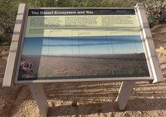 The Desert Ecosystem and You Marker (Saguaro National Park, Arizona)