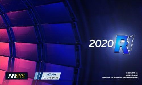 ANSYS 2020 R1 nCode DesignLife x64 full license