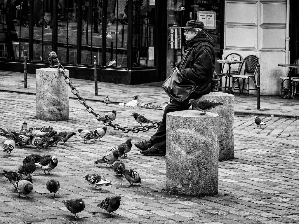 L'amour vache : l'homme et les pigeons... 49503597777_5221265400_b