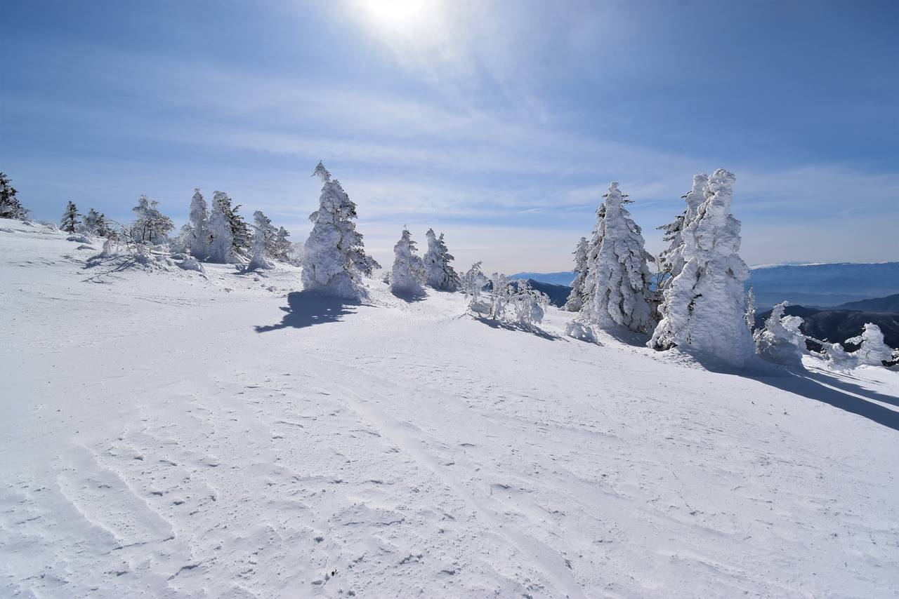 根子岳山頂に建ち並ぶ樹氷
