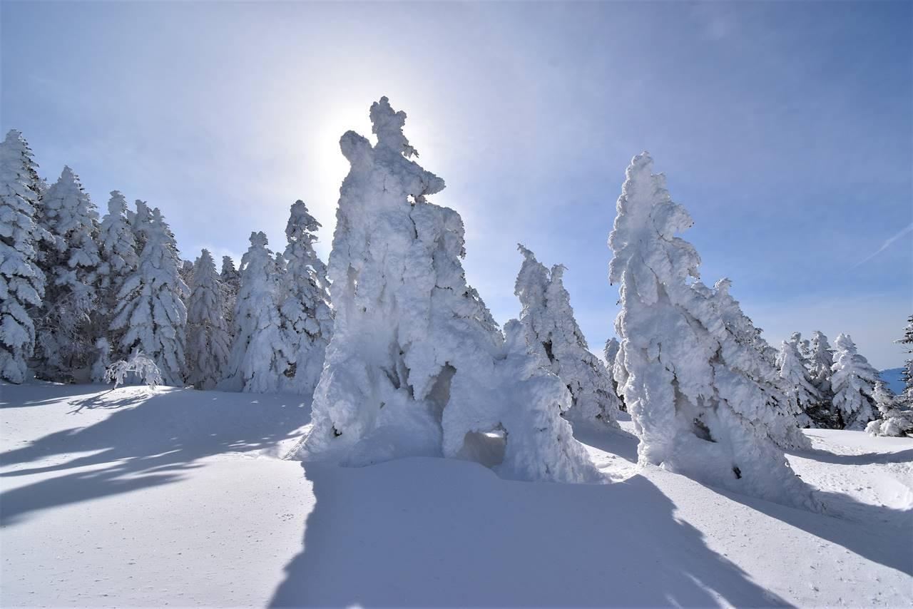冬の根子岳 スノーシューハイク