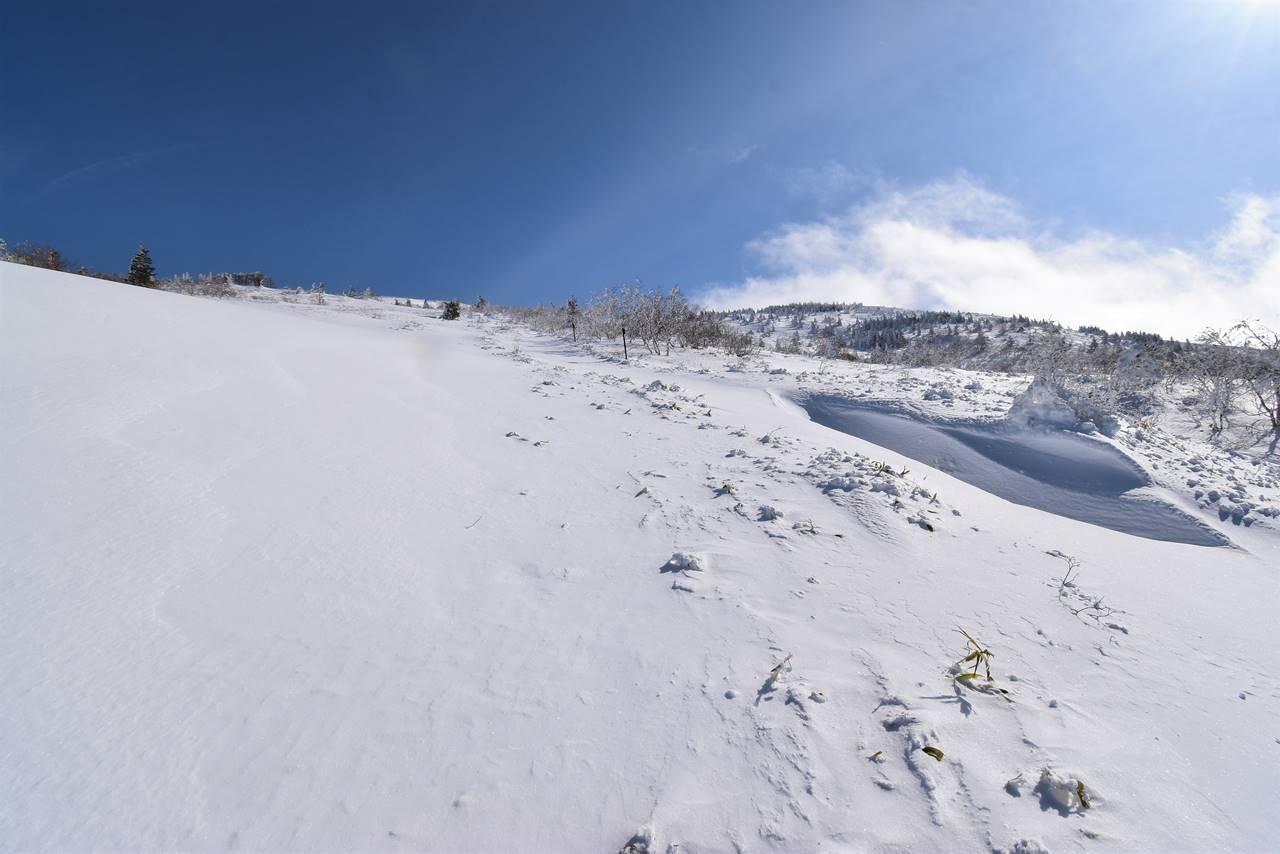根子岳の雪原