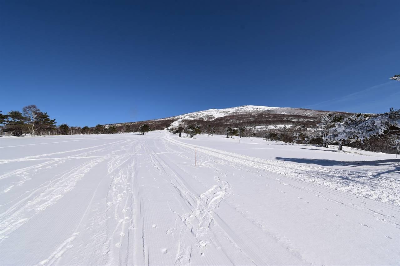 スキー場から眺める根子岳