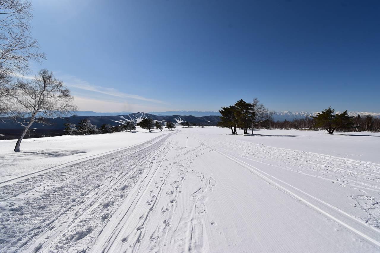 冬の根子岳 スノーキャットに圧雪された雪原