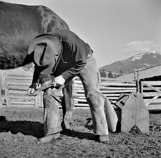 Man and Steed: Rancher William Heck shoeing a horse at his ranch in the Moreno Valley, Colfax County, New Mexico. February 1943.