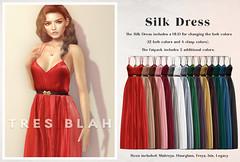 Tres Blah - Silk Dress