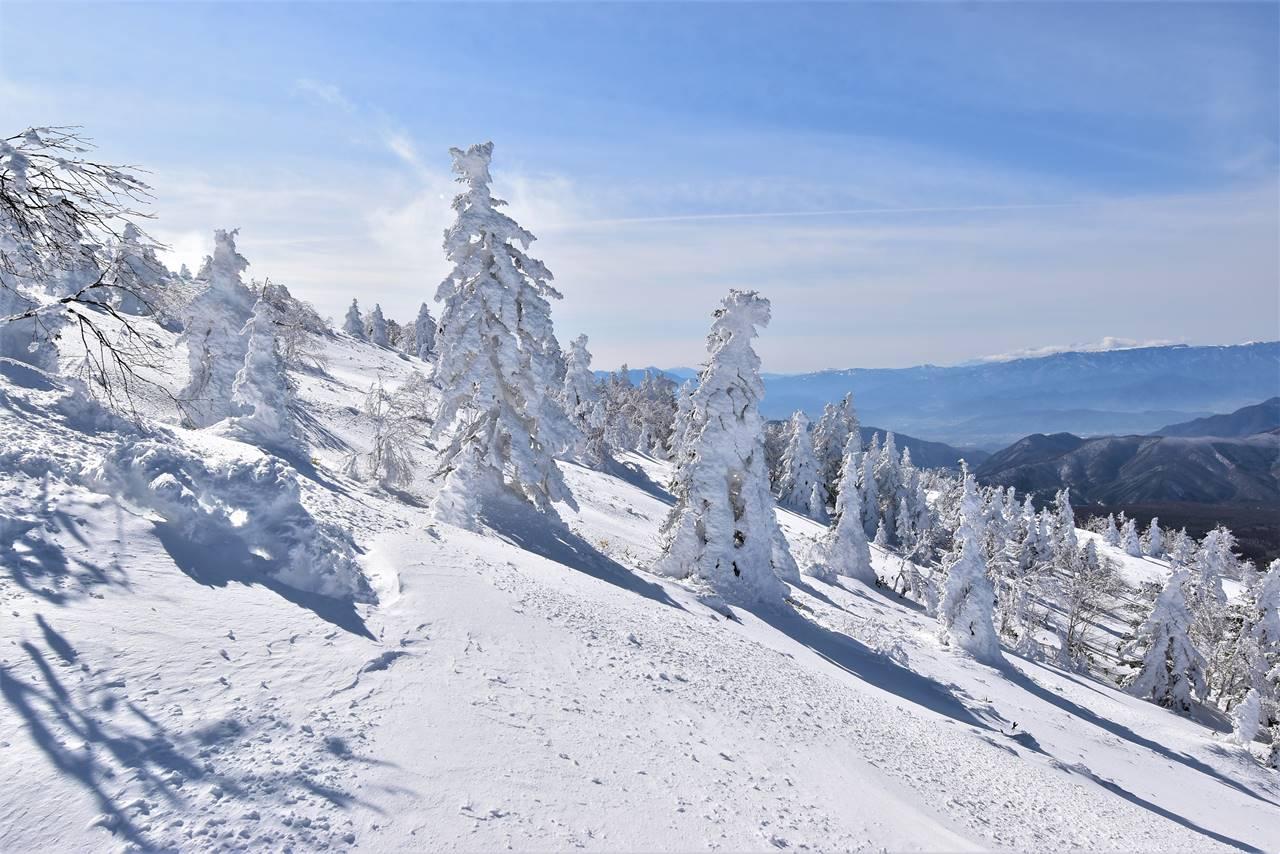 冬の根子岳の樹氷
