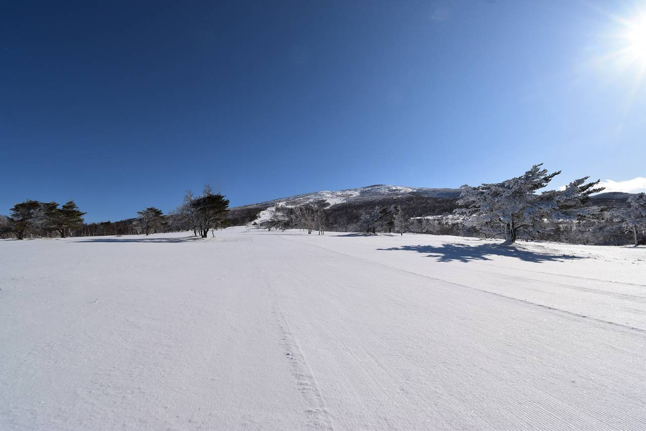 奥ダボススキー場から根子岳へ雪山登山