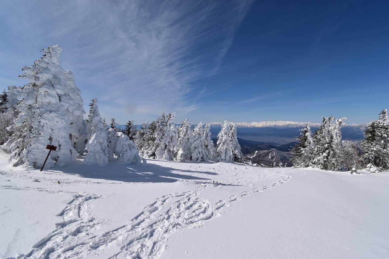 冬の根子岳 樹氷・スノーモンスター広がる雪山登山
