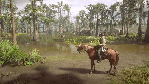 Red Dead Redemption 2 - The Swamps