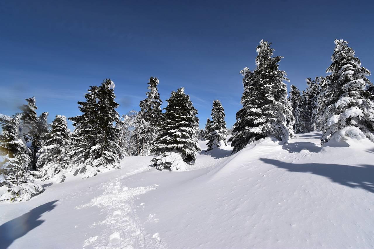 冬の根子岳登山