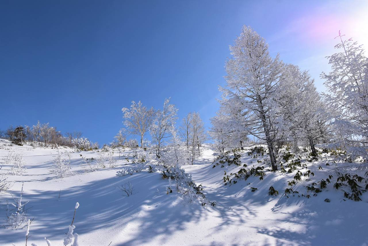 冬の根子岳 雪山登山