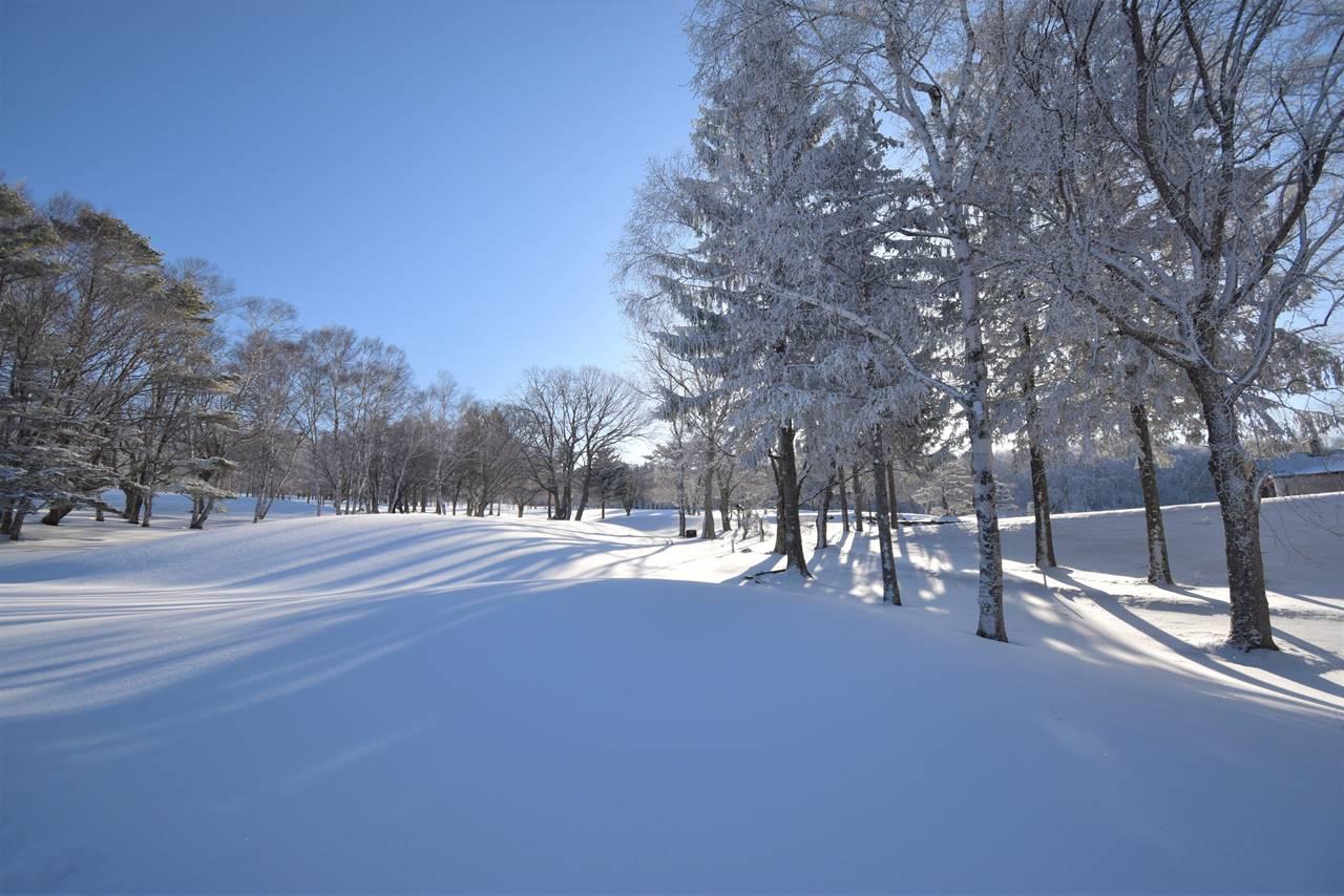冬の菅平高原 雪原風景