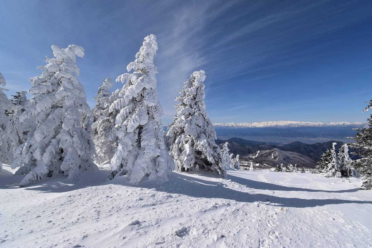 根子岳 樹氷・スノーモンスター広がる雪山登山