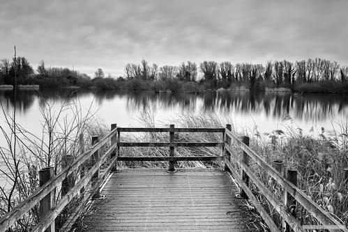 miltoncountrypark cambridge cambridgeshire blackandwhite kase09ndsoft