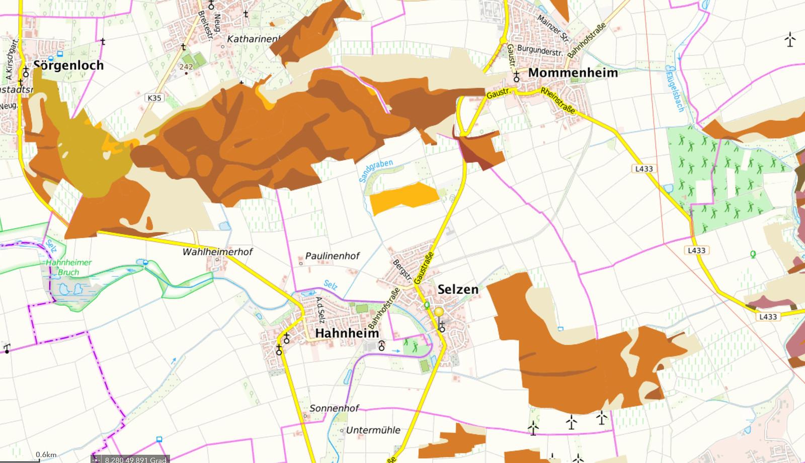 Bodengruppen bei Selzen (Quelle: Weinbergsbodenkarte vom GeoBox-Viewer Weinbau der Dienstleistungszentren Ländlicher Raum in Rheinland-Pfalz)