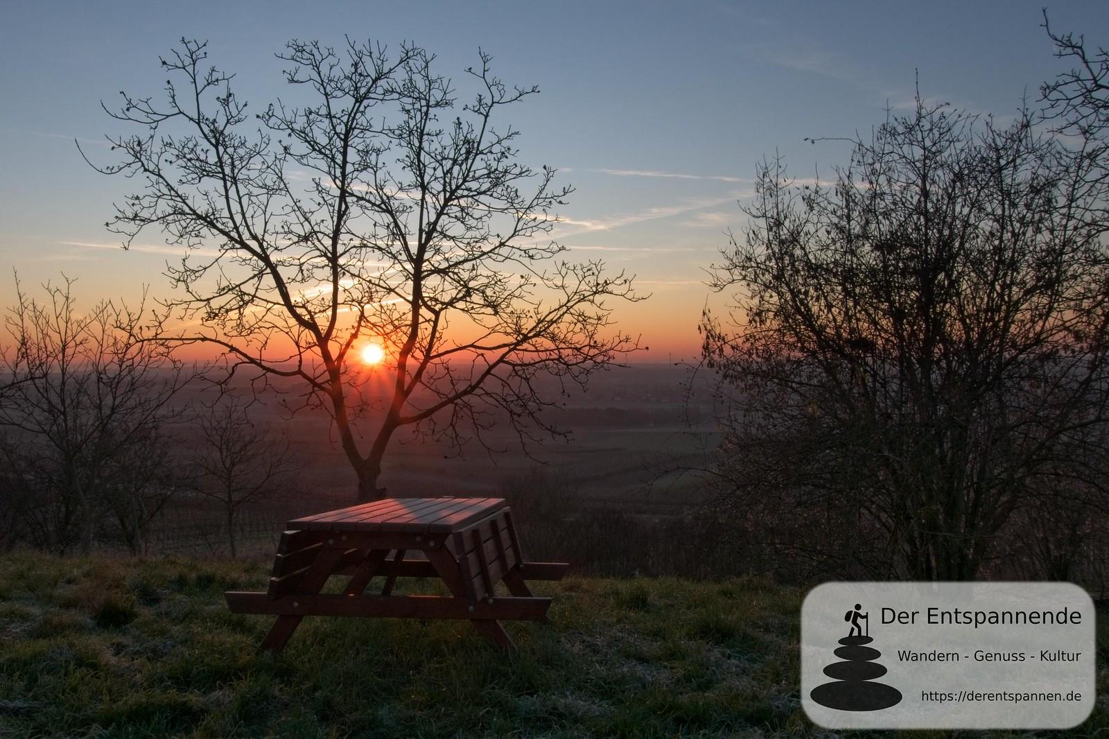 Sonnenaufgang, Jubiläumswald im Selzer Gottesgarten (Januar am Selzbogen)