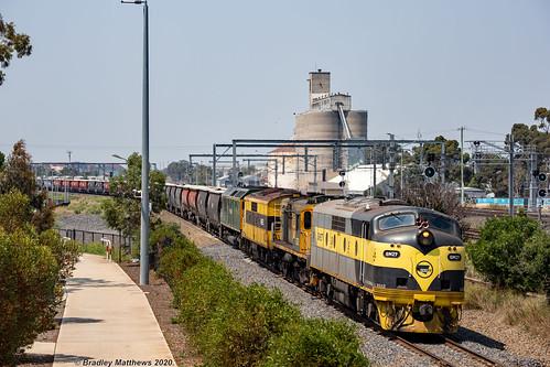 SSR Grain at Sunshine on 8/2/2020.