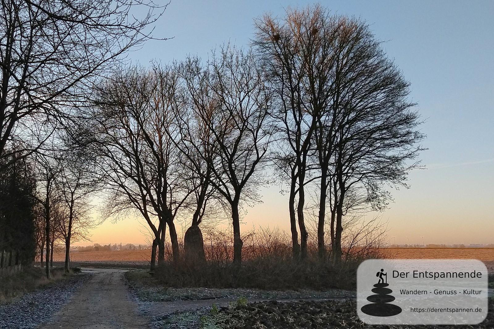 Selzer Hinkelstein am Sandgraben (Januar am Selzbogen)