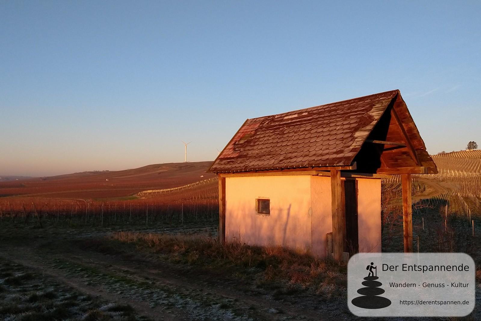 SunriseRun, Wingertshäuschen über Mommenheim (Januar am Selzbogen)