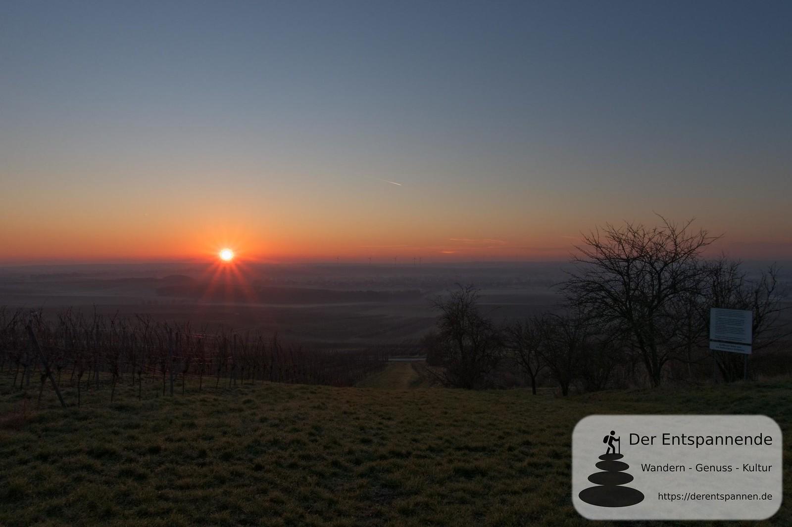 Sonnenaufgang über dem Selzbogen vom Jubiläumswald (Januar am Selzbogen)