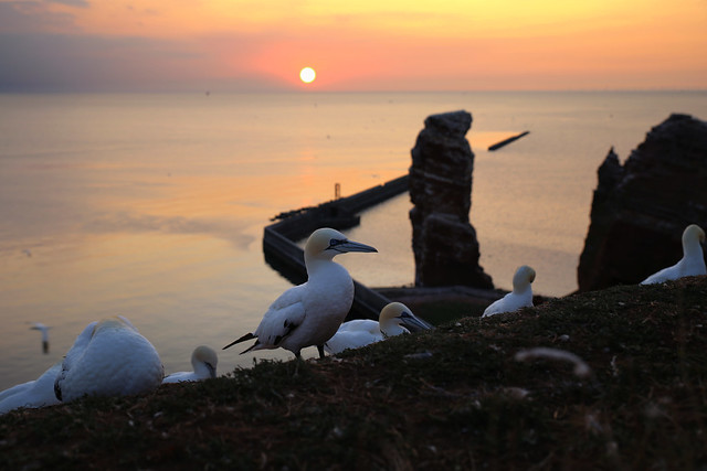 When the sun goes down in Helgoland