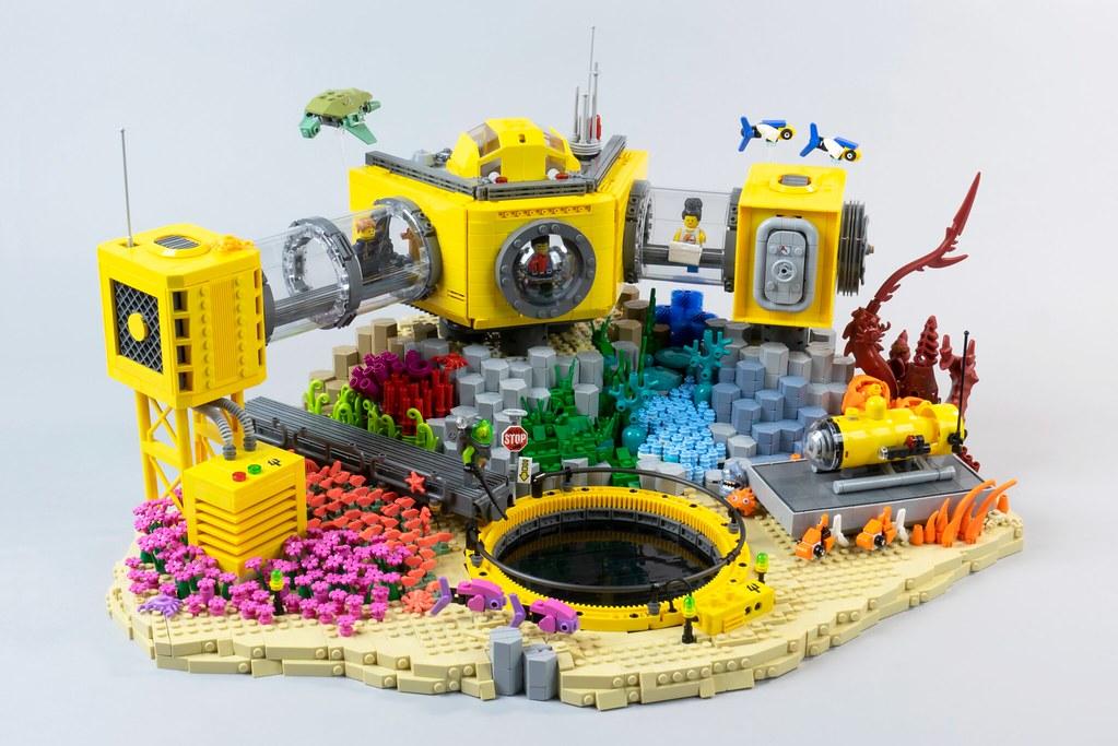 The Octopus's Garden