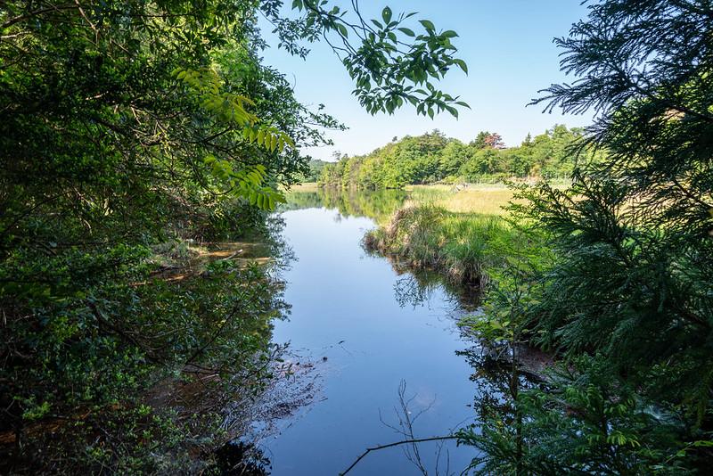 金勝アルプスの池