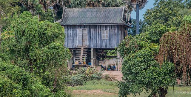 2019 - Cambodia - Tonlé Sap River - 6