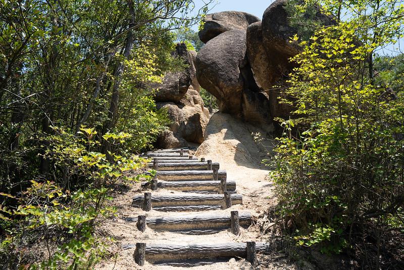 金勝アルプスの登山道