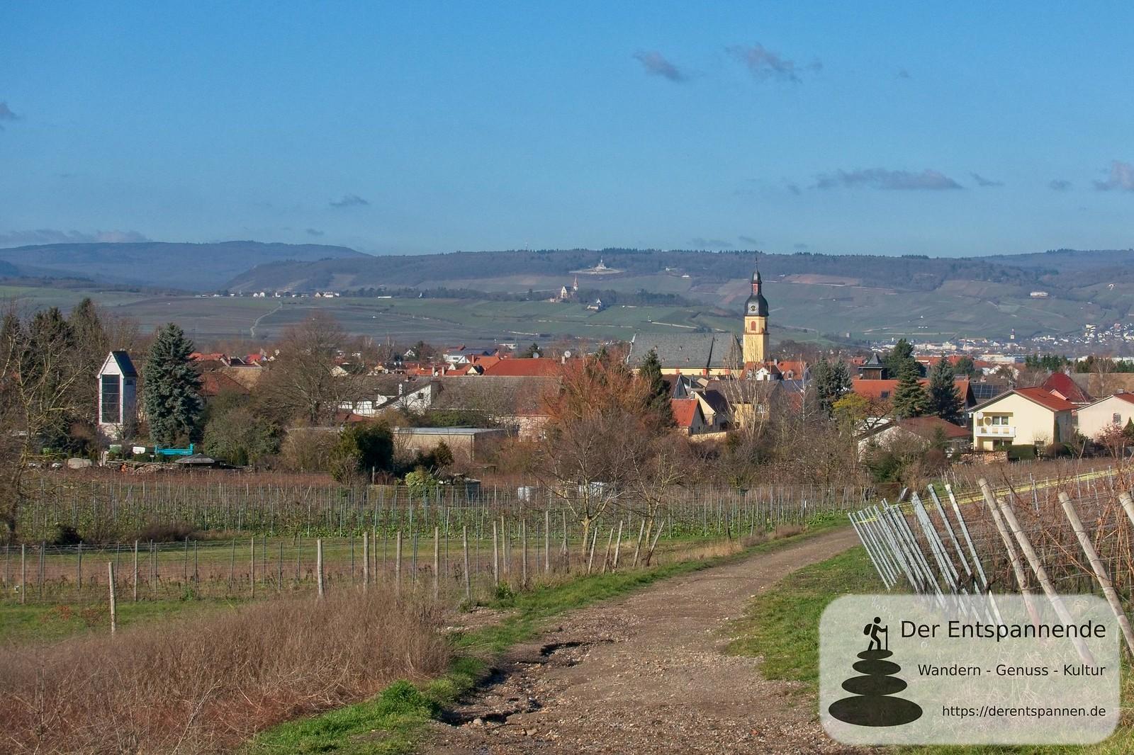 Blick zurück nach Ockenheim und über den Rhein zum Niederwalddenkmal