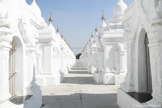 Kuthodawilla on satoja valkoisia pagodeja siisteissä riveissä